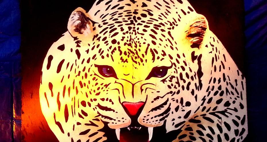 Aangeschoten-Wild-2014-06